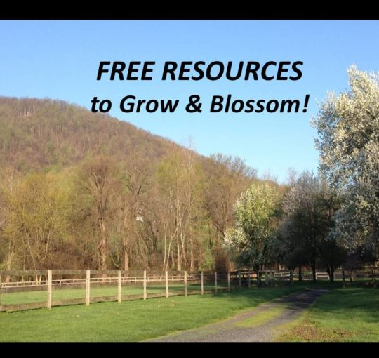 FREE Resources to Grow & Blossom!